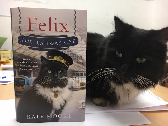 Black and white cat Felix laying next a copy of her book titled: Felix The Railway Cat