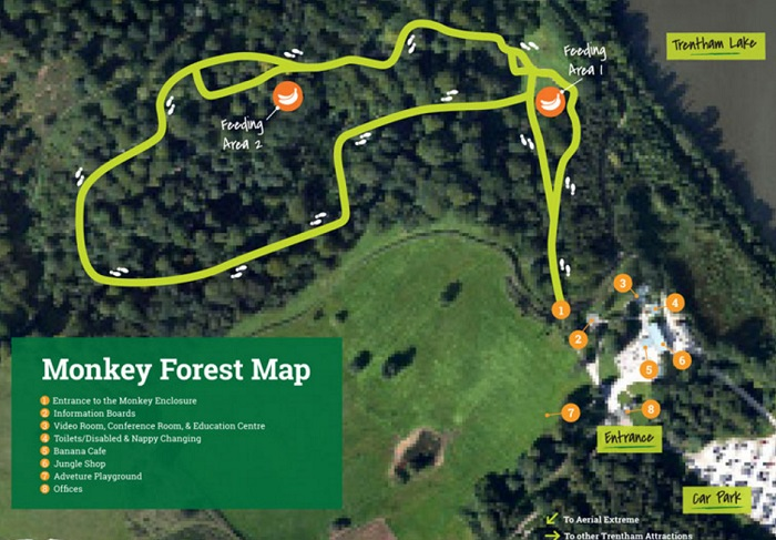 An image of a map of Trentham Monkey Forest showing the pathways, feeding areas, entrance and car park