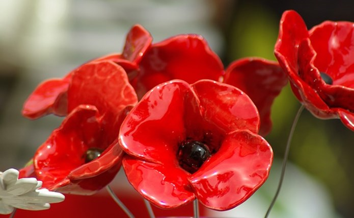 A close-up shot of 5 ceramic red poppies