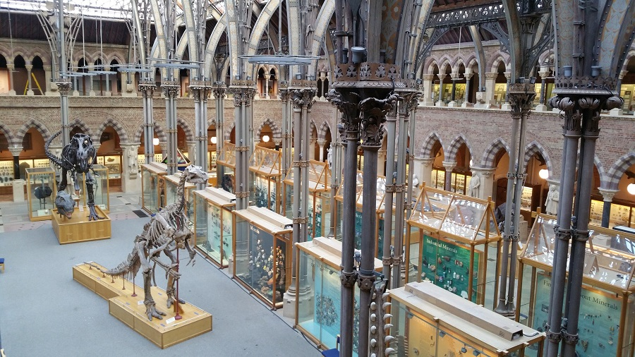 Beautiful museums like this natural history museum are just a train journey away in Oxford.
