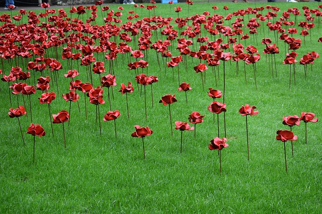 Ceramic poppies at the Weeping Window