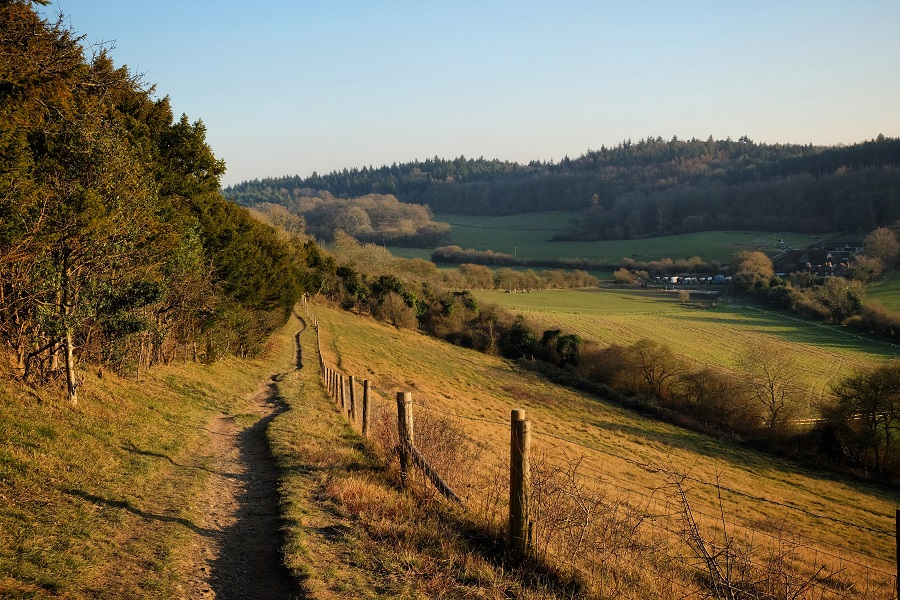 Guildford's stunning countryside is a great location for the UK's Fox ultra-marathon, with rolling green hills and leafy trees.
