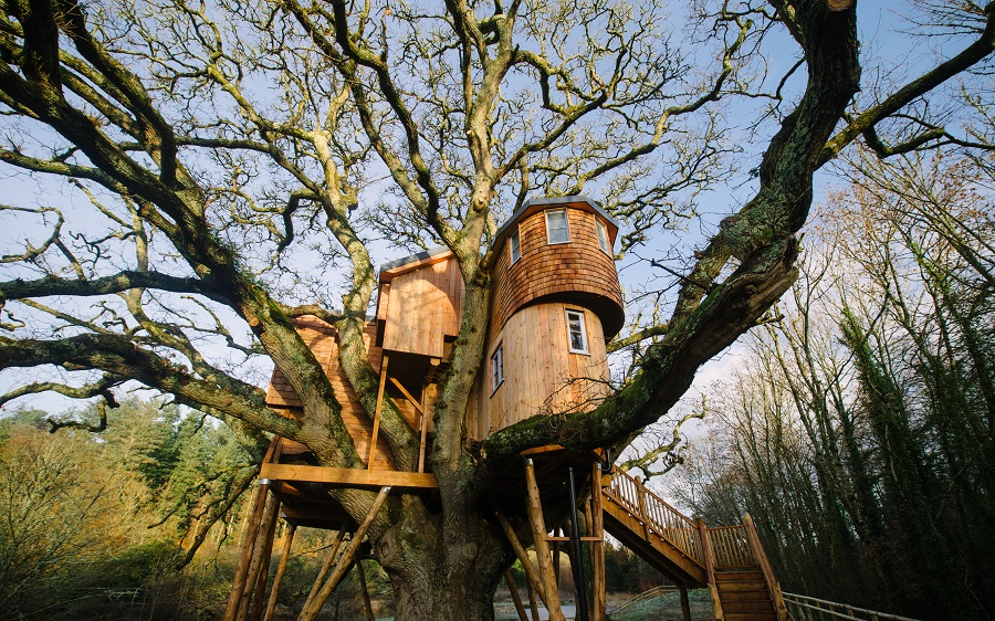 Wooden treehouse in an oak tree at Treetops Hotel, Devon, an eco hotel.